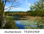 autumn scenery. beautiful lake... | Shutterstock . vector #753541969