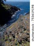 Small photo of A narrow surge chanel seperates cliffs along the coast of East Sooke Regional Park, Vancouver Island, BC