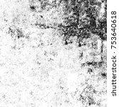 black and white grunge... | Shutterstock . vector #753640618