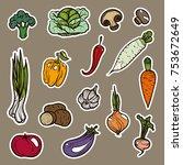 vector illustration. hand... | Shutterstock .eps vector #753672649