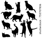 Stock vector set vector silhouettes of the cat different poses standing jumping and sitting black color 753707836