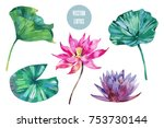 tropical watercolor flowers ... | Shutterstock .eps vector #753730144