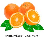 orange isolated on white... | Shutterstock . vector #75376975