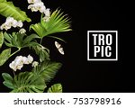 vector botanical horizontal... | Shutterstock .eps vector #753798916