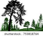 illustration with pine trees... | Shutterstock .eps vector #753818764