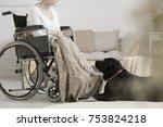 cancer patient on a wheelchair...   Shutterstock . vector #753824218