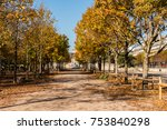 the leaves are turning colors... | Shutterstock . vector #753840298