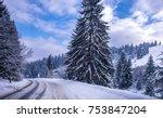 christmas winter landscape ... | Shutterstock . vector #753847204