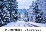 christmas winter landscape ... | Shutterstock . vector #753847228