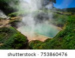 valley of geysers  kamchatka ...   Shutterstock . vector #753860476