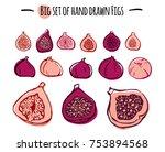 hand drawn vector figs set.   Shutterstock .eps vector #753894568