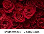 Stock photo red rose background 753898306