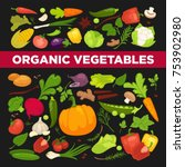 organic vegetables  cabbages or ... | Shutterstock .eps vector #753902980