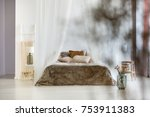 brown pillows and fur coverlet... | Shutterstock . vector #753911383