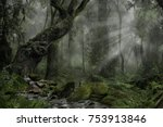 forest in darkness | Shutterstock . vector #753913846