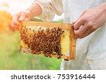 the beekeeper holds a honey... | Shutterstock . vector #753916444