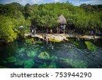 tulum mexico   march 10 2017 ... | Shutterstock . vector #753944290