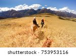horseback riding in andes... | Shutterstock . vector #753953116