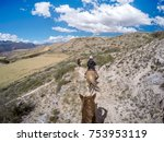 horseback riding in andes... | Shutterstock . vector #753953119