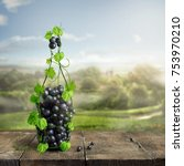 Bottle Wine Made From Grapevine - Fine Art prints