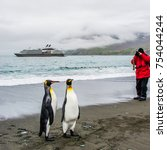 two friends of king penguins in ... | Shutterstock . vector #754044244