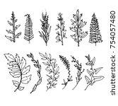 grass black line on white... | Shutterstock .eps vector #754057480