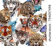 Exotic Tiger Wild Animal ...