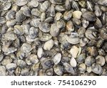 fresh clams at the fish market... | Shutterstock . vector #754106290