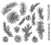 conifer  fir  cones  winter... | Shutterstock .eps vector #754163140