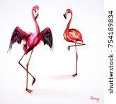 illustration of two flamingo.... | Shutterstock .eps vector #754189834