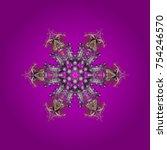 fine winter ornament. colorful... | Shutterstock .eps vector #754246570