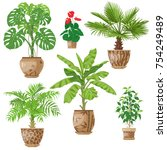 potted tropical plants set. ... | Shutterstock .eps vector #754249489