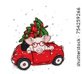 Pig In The Car With A Christma...