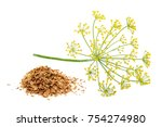 Green Wild Fennel Flowers With...