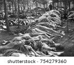 rows of bodies at nazi german...
