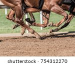 Chestnut Horse Legs Pound The...
