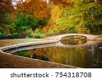 Scenic Autumn Duck Pond With...