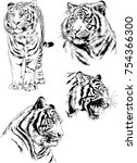 set of vector drawings on the... | Shutterstock .eps vector #754366300