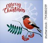 merry christmas postcard.... | Shutterstock .eps vector #754380259
