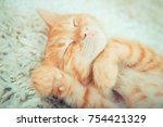 Stock photo little red kitten cute little kitten ginger kitten kitten lies on the fluffy carpet at home 754421329