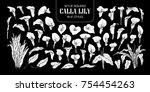 set of isolated white... | Shutterstock .eps vector #754454263