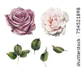 Stock photo roses and leaves watercolor can be used as greeting card invitation card for wedding birthday 754521898