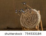 Traditional Feathered Arrows I...