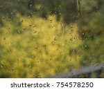 autumn rainy day behind window | Shutterstock . vector #754578250