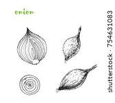 onion hand drawn vector... | Shutterstock .eps vector #754631083