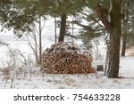 a pile of firewood for the... | Shutterstock . vector #754633228