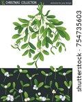 white omela  mistletoe  holly...   Shutterstock .eps vector #754735603