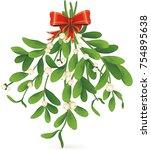 omela  holly  mistletoe bunch... | Shutterstock .eps vector #754895638
