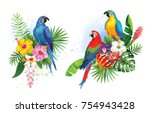 tropical summer arrangements... | Shutterstock .eps vector #754943428