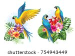 tropical summer arrangements... | Shutterstock .eps vector #754943449